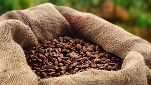 ea8dd2133 Ingresan 300 mil sacos de café de Centroamérica | AGRONOTICIAS